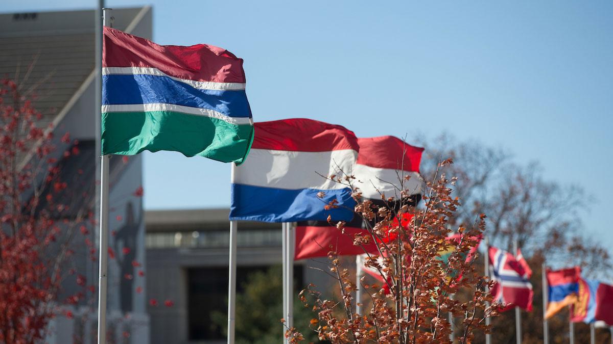 Avenue of international flags