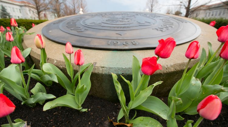 Flowers at the Missouri state seal
