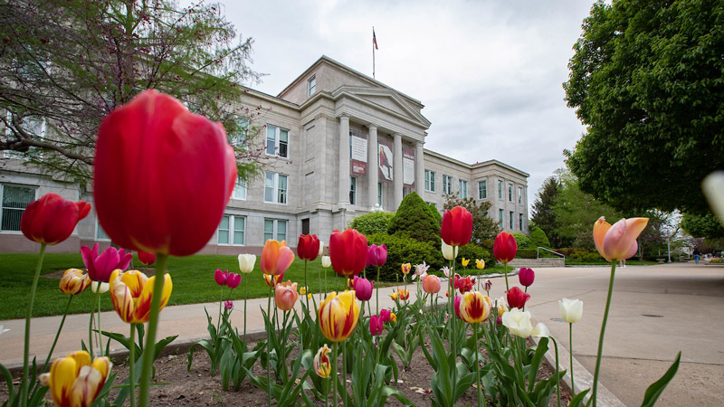 Colorful red and yellow flowers bloom in front of Carrington Hall