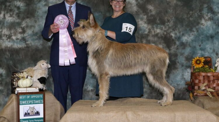 Emily showing award winning dog.