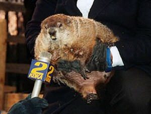 Groundhog-Day-Phil-4