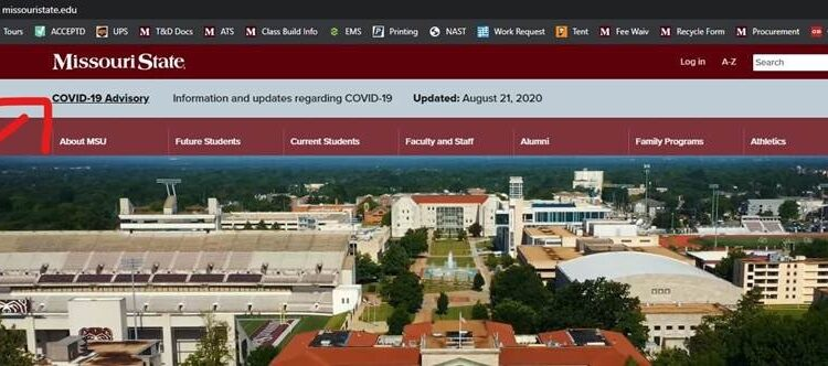 Image of the MSU homepage.