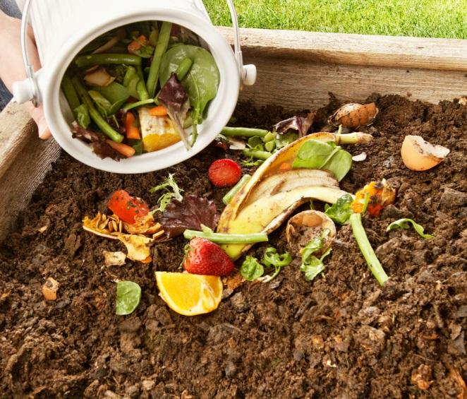 compost-pile square