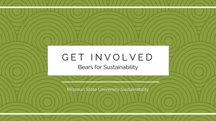 Get Involved! Bears for Sustainability