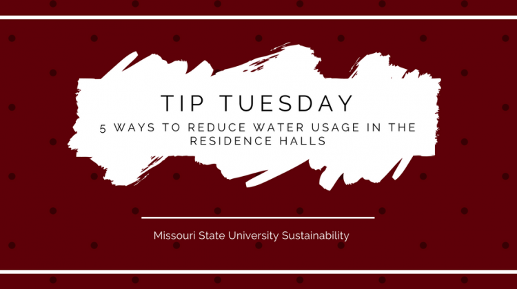 5 Ways to Reduce Water Usage in the Residence Halls