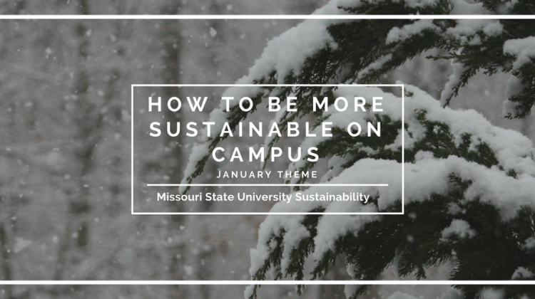 Monthly Theme: How To Be More Sustainable on Campus