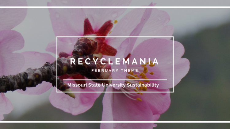 Monthly Theme: RecycleMania