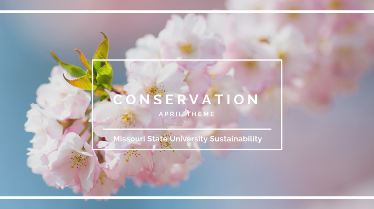 Monthly Theme: Conservation