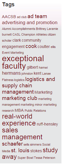 "Word cloud from the marketing blog emphasizes themes such as ""exceoptional faculty"" and ""real-world experience"""